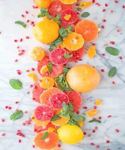 Citrus Pomegranate Salad adult paint by numbers