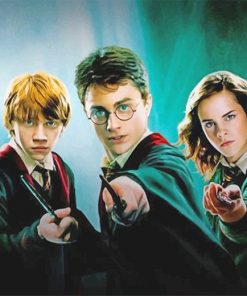 Harry Potter Movie adult paint by numbers
