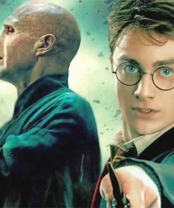 Harry Potter and Voldemort adult paint by numbers