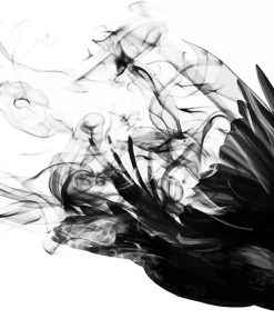 Bird Smoke paint by number