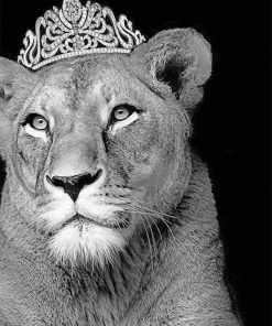 Queen Lioness Paint By Numbers