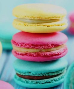 Colored Macarons adult paint by numbers