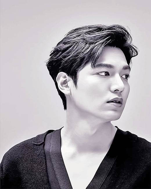 Lee min ho Black and white adult paint by numbers