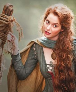 Ros Game Of Thrones adult paint by numbers