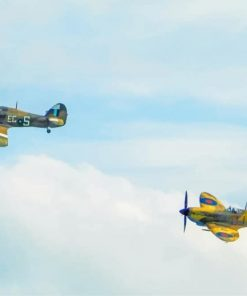 Two Spitfires Fighter paint by number
