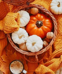 Autumn Pumpkin paint by numbers