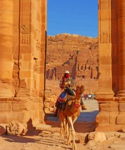 Petra Camel Paint By Numbers