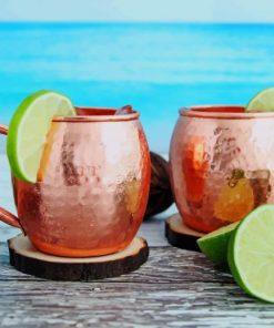 Beach Side Moscow Mule Cocktails paint by numbers