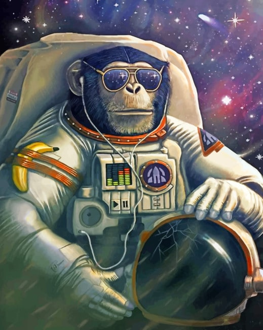 Astronaut Monkey paint by numbers