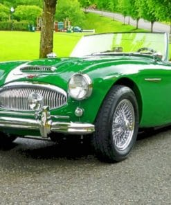 Green Vintage Car paint by numbers