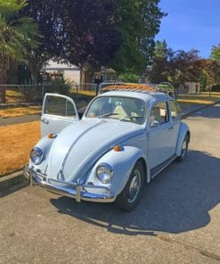 Vintage Volkswagen Beetle Paint by numbers