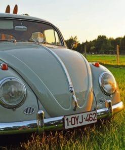 Volkswagen Beetle Car paint by numbers