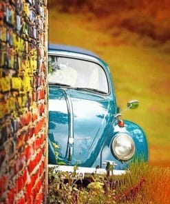 Aesthetic Beetle paint By Numbers